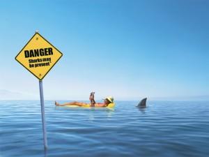 Shark Warning