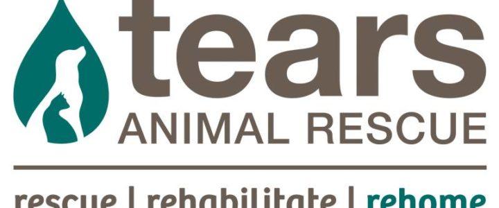 TEARS Animal Rescue Christmas Cake Raffle